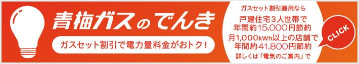 https://www.omegas.co.jp/images/denki/denki-bnr3.jpg